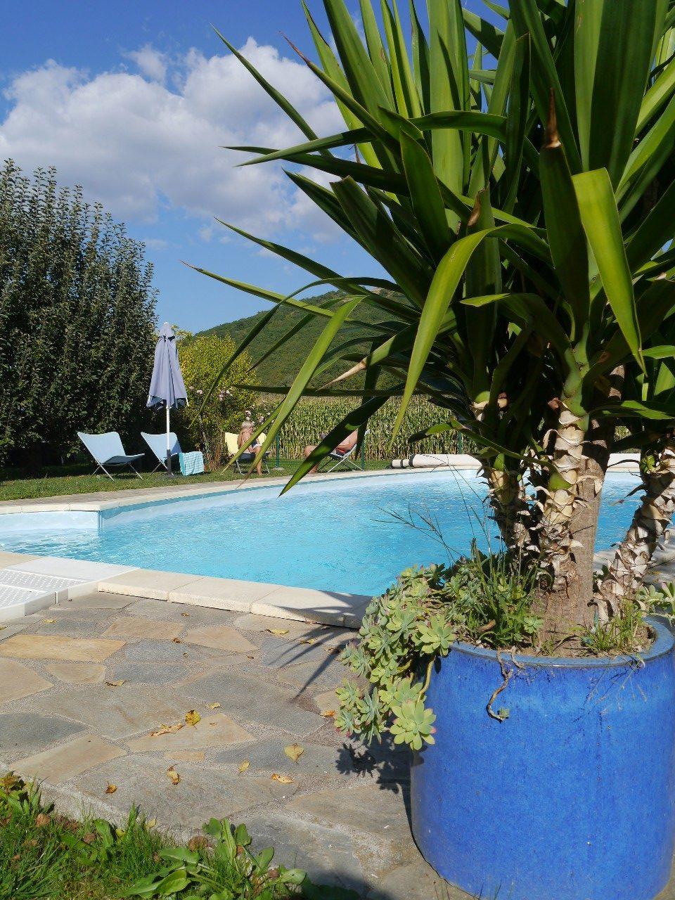 gite-massiac-cantal-auvergne-3-guepes-piscine-37